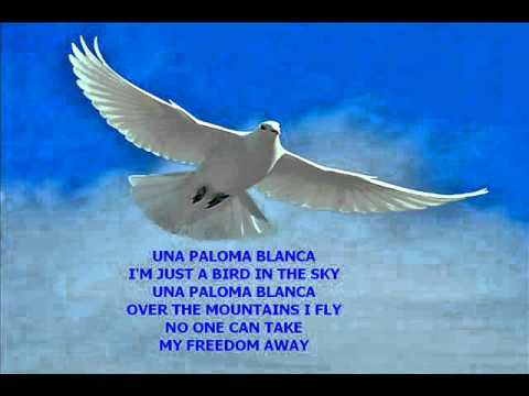 Nobody can take My freedom away … Really … Una Paloma Blanca